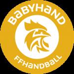 Pratique du Handball - BabyHand